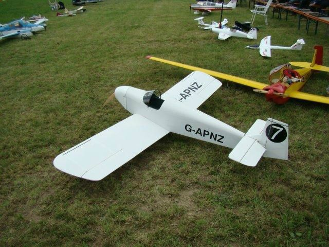 Robert's 1/3  		Scale D.31 Turbulent at the Aspach Electric Event